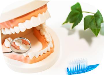 一番大切なのは、虫歯の早期発見・早期治療です。